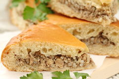 Traditional russian pie with meat and rice Royalty Free Stock Images