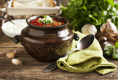 Traditional Russian red soup Borscht Royalty Free Stock Photography