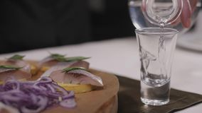 Traditional russian snacks salted herring with vegetables, onion, lemon, yellow lime, bread and shots of vodka. stock footage