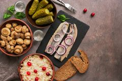 Traditional Russian snacks and vodka, sauerkraut with cranberries, herring, pickled cucumbers, pickled mushrooms and rye bread on stock images