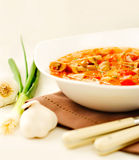 Traditional Russian soup Stock Photos