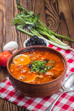 Traditional Russian soup solyanka. Closeup in a bowl on the table Royalty Free Stock Photos