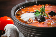 Traditional Russian soup solyanka Stock Photography