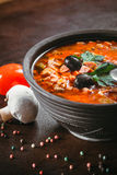 Traditional Russian soup solyanka Stock Photos