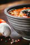 Traditional Russian soup solyanka. Closeup in a bowl on the table Stock Images