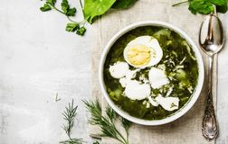 Traditional Russian soup with sorrel, meat and eggs, called gree. N borsch, top view stock photos