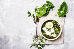 Traditional Russian soup with sorrel, meat and eggs, called gree. N borsch, top view royalty free stock photography