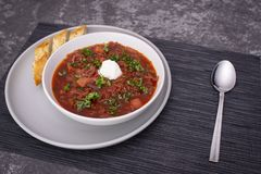 Traditional Russian Ukrainian borscht with sour cream and dill stock image