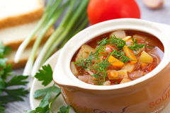 Traditional Russian Ukrainian vegetable borscht soup Royalty Free Stock Images