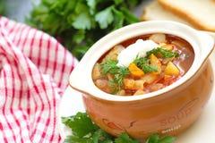 Traditional Russian Ukrainian vegetable borscht soup Stock Image