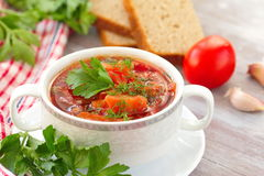 Traditional Russian Ukrainian vegetable soup Royalty Free Stock Image