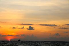 Traditional sailing boats  on a sunset tour Stock Photography