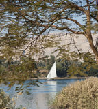 Traditional sailing felluca on the Nile Royalty Free Stock Photography