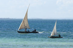 Traditional sailing fishing boats racing Royalty Free Stock Photos