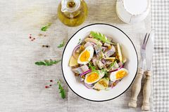 Traditional salad of salted herring fillet, fresh apples, red onion and eggs. Kosher food. Scandinavian cuisine. Top view. Flat lay royalty free stock photography