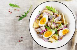 Traditional salad of salted herring fillet, fresh apples, red onion and eggs. Kosher food. Scandinavian cuisine. Top view. Flat lay stock images