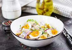 Traditional salad of salted herring fillet, fresh apples, red onion and eggs. Kosher food. Scandinavian cuisine stock photography