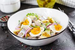Traditional salad of salted herring fillet, fresh apples, red onion and eggs. Kosher food. Scandinavian cuisine stock image