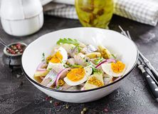 Traditional salad of salted herring fillet, fresh apples, red onion and eggs. Kosher food. Scandinavian cuisine stock photos