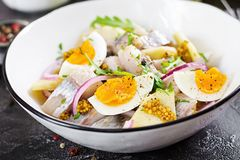Traditional salad of salted herring fillet, fresh apples, red onion and eggs. Kosher food. Scandinavian cuisine stock images