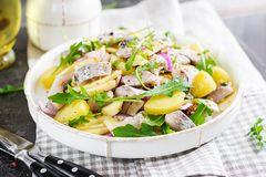 Traditional salad of salted herring fillet, fresh apples, red onion and eggs. Traditional salad of salted herring fillet, fresh apples, red onion and potatoes royalty free stock photo
