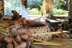A traditional Samoan cooking area. Inside a hut with woven baskets and coconuts ready to prepare Stock Image