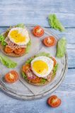Traditional sandwich with fried bacon royalty free stock images