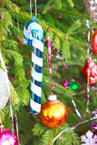 Traditional Santa cane on pine branch. Royalty Free Stock Photos