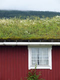 Traditional scandinavian grass roof Stock Photos