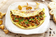 Traditional scrambled eggs with fresh chanterelle Royalty Free Stock Photography
