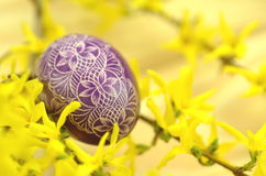 Traditional scratched handmade Easter egg Stock Photography