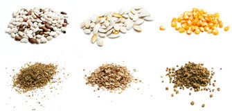 Traditional seeds Royalty Free Stock Photography