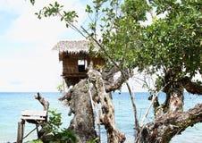 Traditional shack on tree stock photos