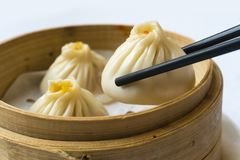 Traditional Shanghai dumpling, also called xiaolongbao Stock Image