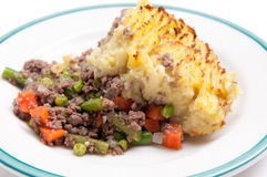 Traditional shepherd's pie Royalty Free Stock Photos