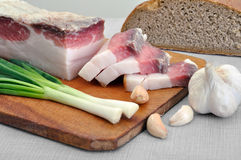 Traditional simple ukrainian food. Salted fresh lard (salo), garlic, green onion and rye bread royalty free stock image