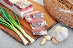 Traditional simple ukrainian food Stock Images