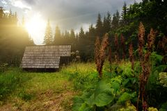 Traditional Slovakian Timber Houses Stock Photos