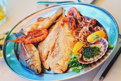 Traditional slovenian cuisine, mixed grilled fish and seafood with garlic oil. Selective focus Royalty Free Stock Photos