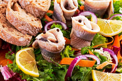 Traditional snacks salted herring with vegetables, onion, lemon, yellow lime and bread Stock Photography