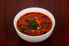 Traditional Solyanka soup. With meat stock image