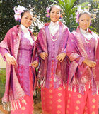 Traditional Songket Dress Stock Image