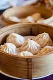 Traditional Soup-Filled Pork Dumpling Royalty Free Stock Photo