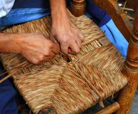 Traditional spain reed chair handcraft man hands. Enea traditional spain dried reed chair handcraft man hands working seat Stock Photography