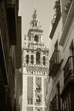 Traditional spanish building in Seville. La Giralda Royalty Free Stock Photos