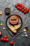 Traditional Spanish cold tomato soup gazpacho in a bowl on stone background. Traditional Spanish food. Concept of Spanish cold sou. P made of ripe tomatoes. Copy stock photos