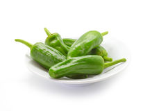 Traditional spanish green peppers. Pimientos de padron. Royalty Free Stock Photos