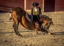 Traditional Spanish horse riding. Alhama de Granada, Spain - 9th September 2016: Traditional Spanish horse riding during a fiesta Stock Images