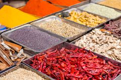 Traditional spices market in India. Stock Images