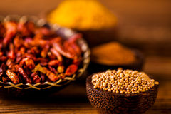 Traditional spices, oriental theme with seasoning Stock Images
